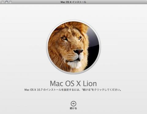 lion-02.jpg
