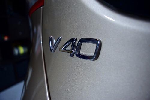 v40-09 DSC_4024.jpg