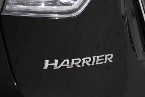 harrier-8.jpg